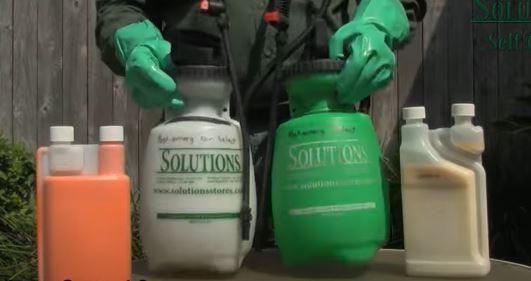 Apply herbicide