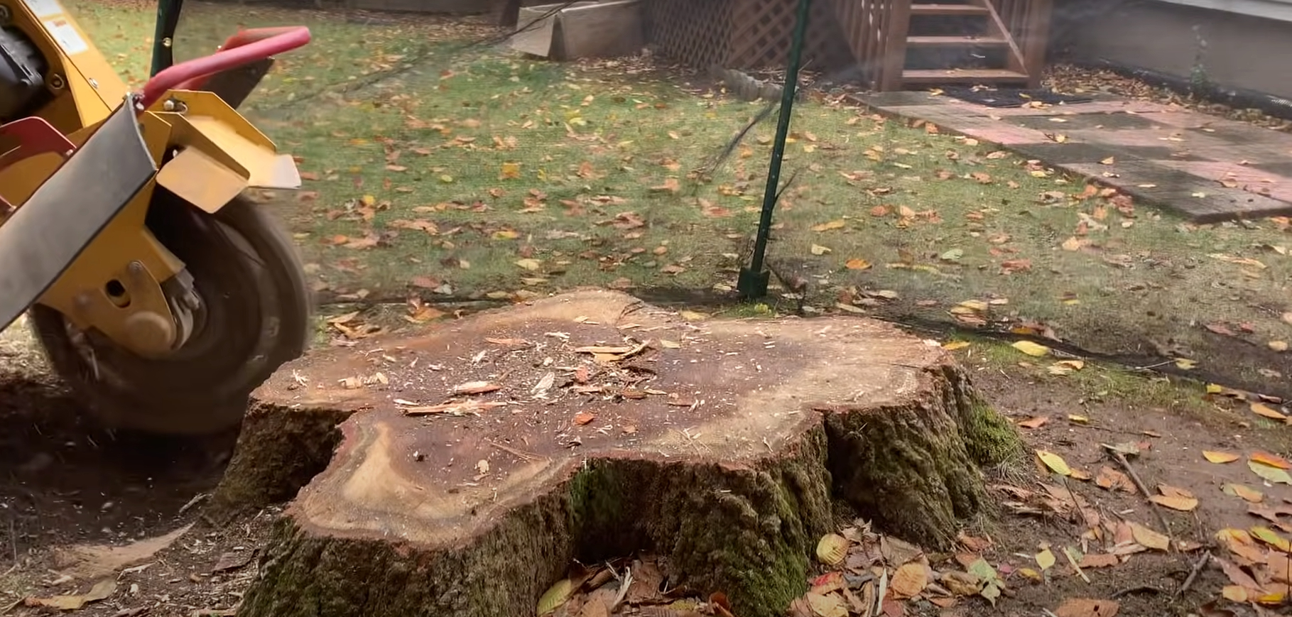 How to Use the Stump Grinder